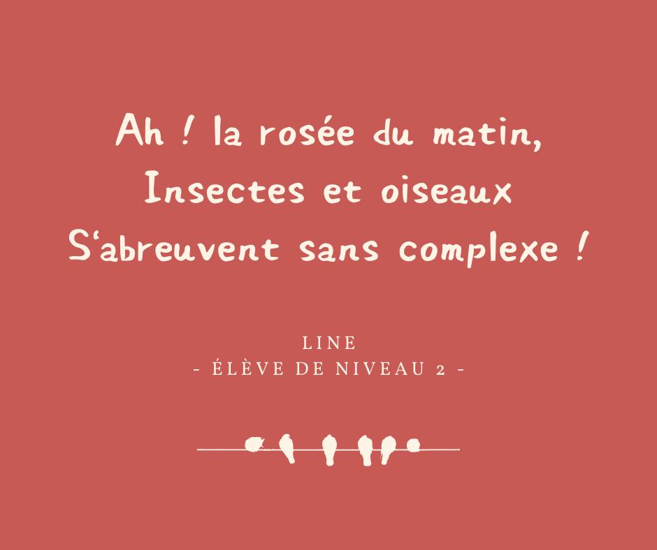 haikus 5